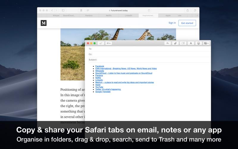 Tabs Saver for Safari Screenshot