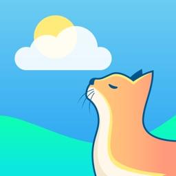 Kitten Weather: Forecast Radar