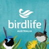 点击获取Aussie Bird Count