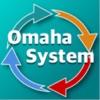 点击获取Omaha System Reference II