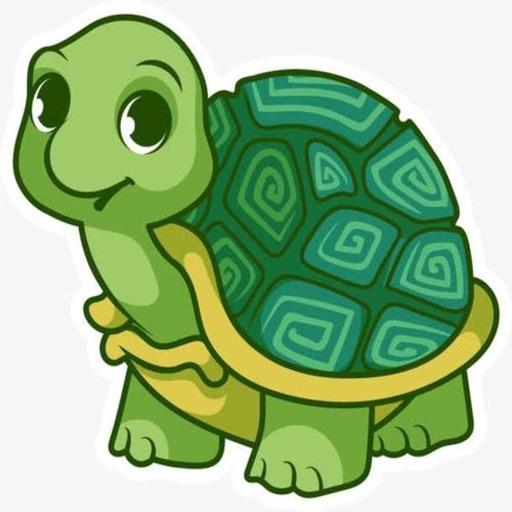 Little Turtle Life