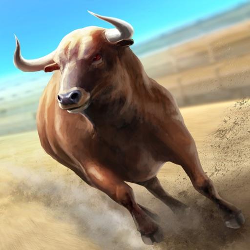 Bullfighting: Street Corrida