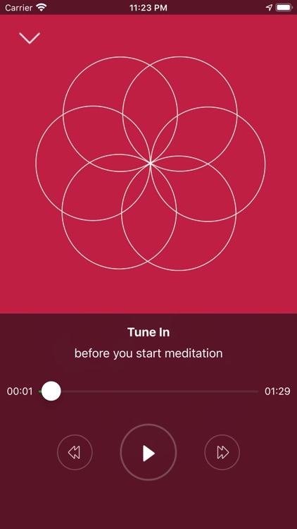 JOY meditation screenshot-4