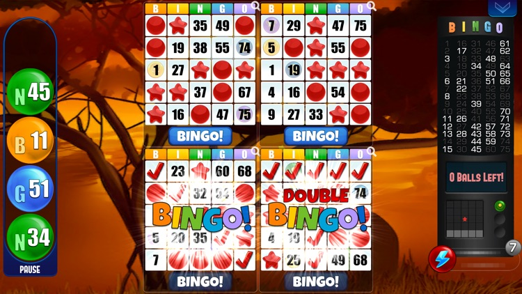 Bingo! Absolute Bingo Games screenshot-1