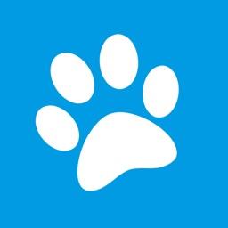 Pounce: Adopt a pet