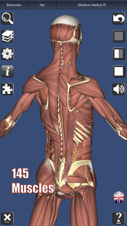 3D Anatomy screenshot-0