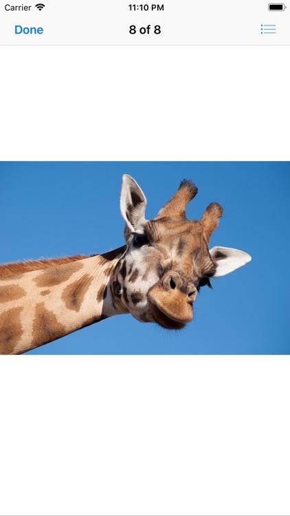 Lotsa Giraffe Stickers screenshot-9