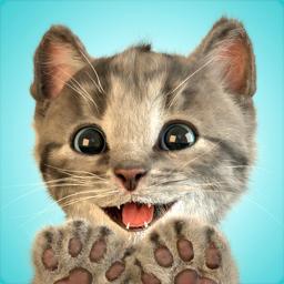 Ícone do app Gatinho - Meu Gato Preferido