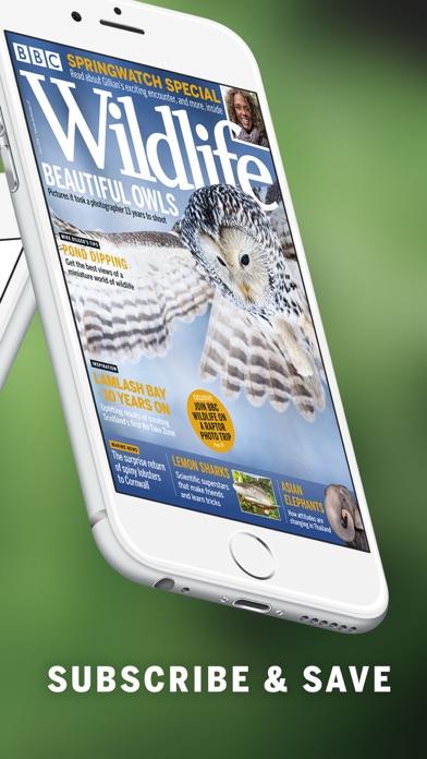 download BBC Wildlife Magazine indir ücretsiz - windows 8 , 7 veya 10 and Mac Download now