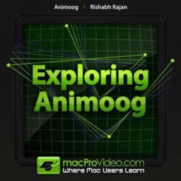 Explore Course for Animoog