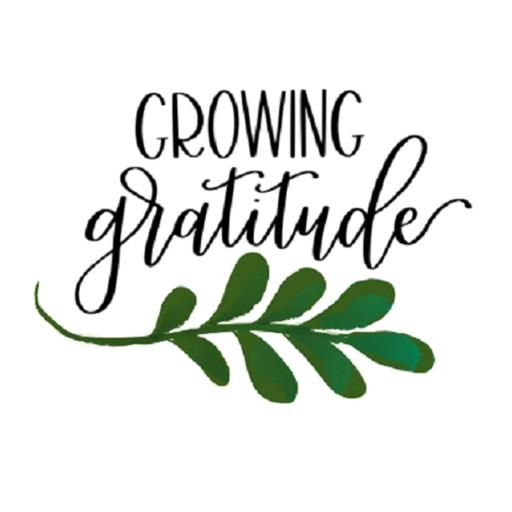 Growing Gratitude Box