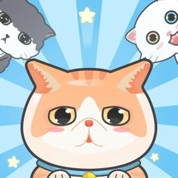 Hyper Kitten -Uno