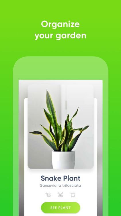 ThePlantMe: Plant Identifier