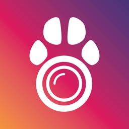 PetCam App - Dog Camera App