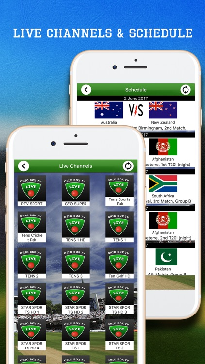 Live Cricket Box screenshot-3