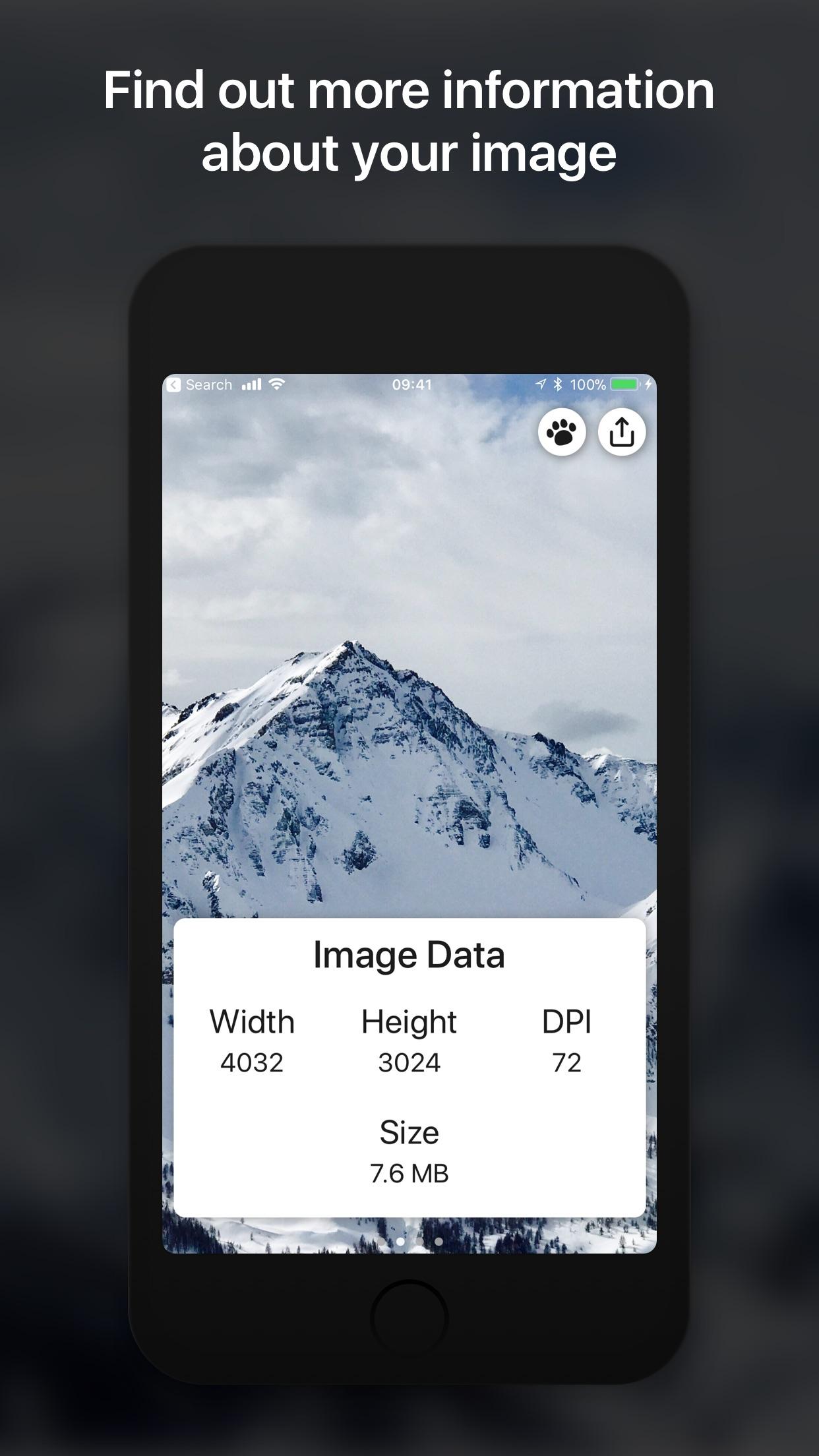 Screenshot do app Metadata