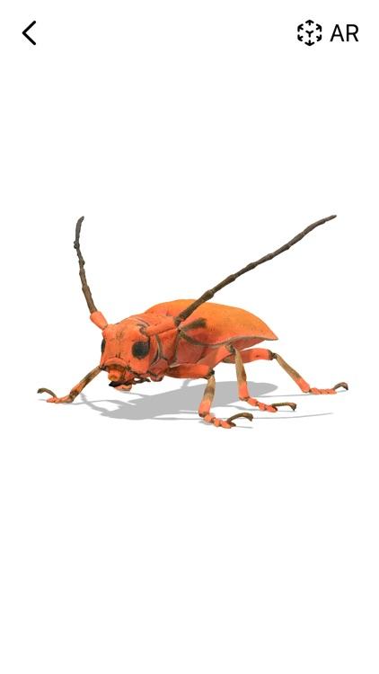 Insecta: screenshot-3
