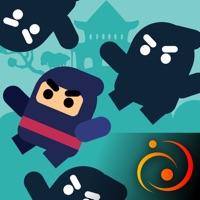 Ninja Shadow Jump