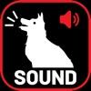 犬の吠える音とノイズ - iPhoneアプリ