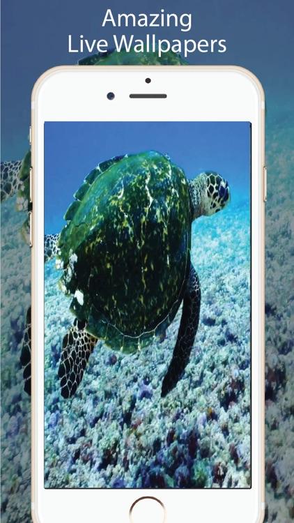 Aquarium Live Wallpapers for U screenshot-3