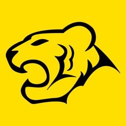 TigerWit Pro