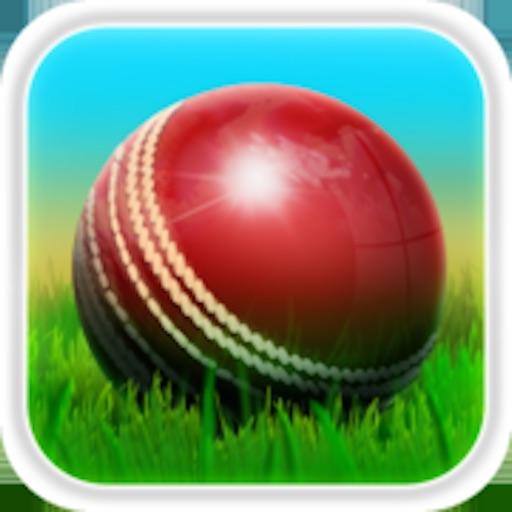 Cricket 3D : Street Challenge