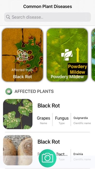 Plants Diseases Identifier Screenshots