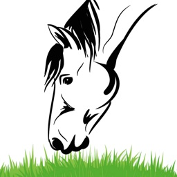 Equine Nutrition Calculator