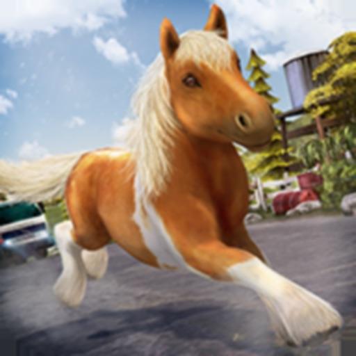 My Cute Pony . Скачки Лошади Дружба Игра