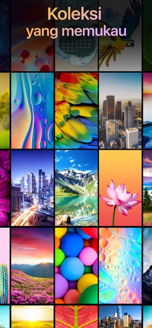Download 3000+ Wallpaper Abstrak Hewan HD Paling Keren