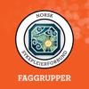 NSF Faggruppekonferanser