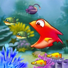 Activities of Hungry Fish - Fishing Frenzy