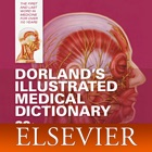 Dorland Medical Illustrated icon