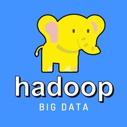 Learn Hadoop & Big Data [Pro]