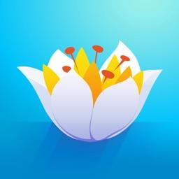 Float - Journey of Flower