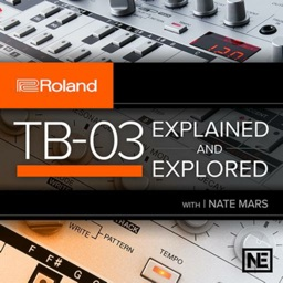TB 03 Explained and Explored