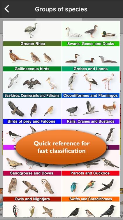 Birds of Europe Guide screenshot-3