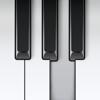 ピアノ-リアルなサウンドのピアノキーボード楽器