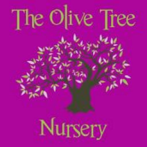 The Olive Tree Nursery