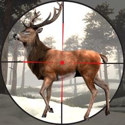 Animal Jungle Hunter Sniper 3D