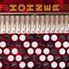 Hohner Chromatic MIDI