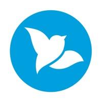 Bluebird App