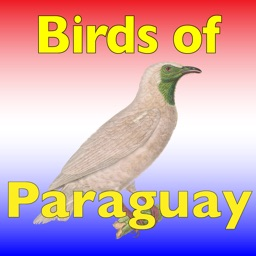 The Birds of Paraguay