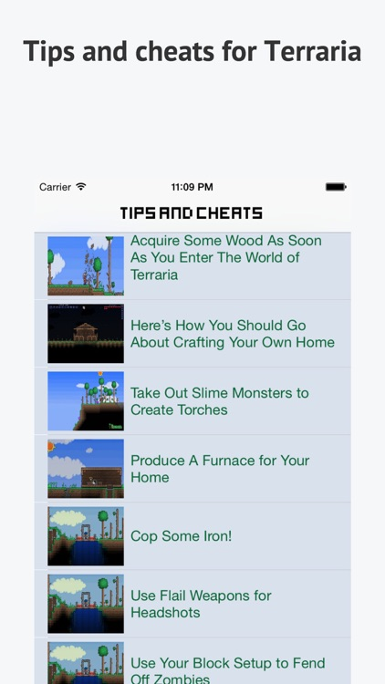 Guide & Wiki for Terraria