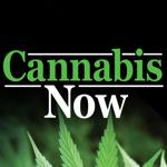 Cannabis Now pour pc