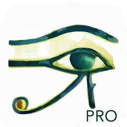 Horus Condition Report Pro