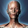 DS ANATOMY HEAD & NECK