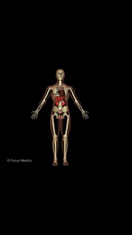 Animated Medical Dictionaries screenshot-4