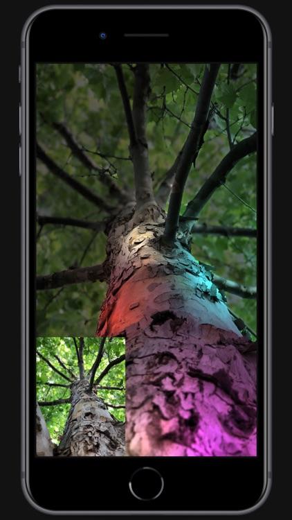 Apollo: Immersive illumination screenshot-7