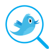 Seguidores Analyzer Twitter